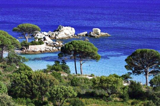Bucht in Korsika