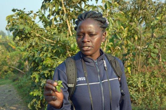 Lokaler Guide Agatha