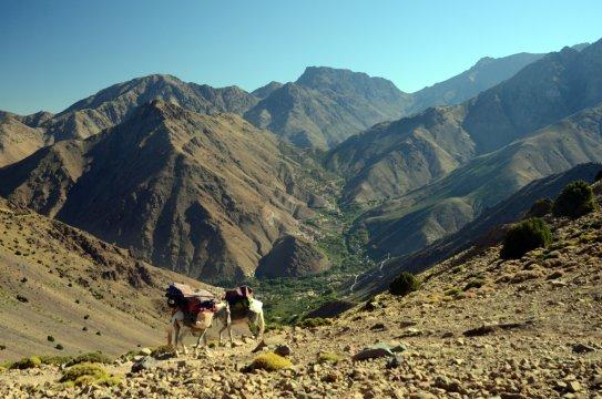Marokko Hoher Atlas Trekking Tag 11_2