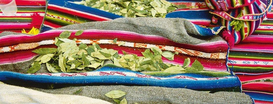 _AMS_BSK_Bolivia_spices_urbs_00000618