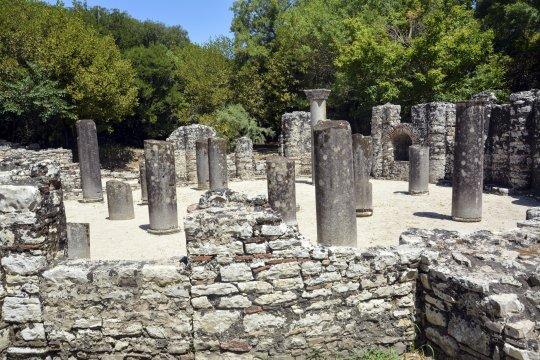Säulenwald in Butrint