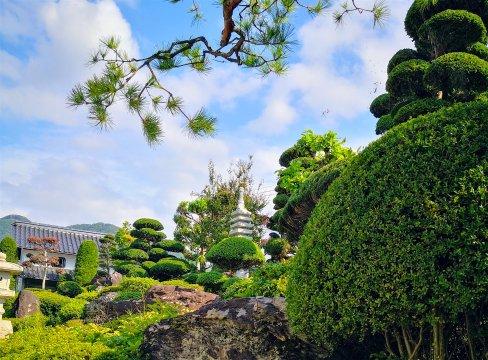 Japanischer Garten in Obuse im Licht