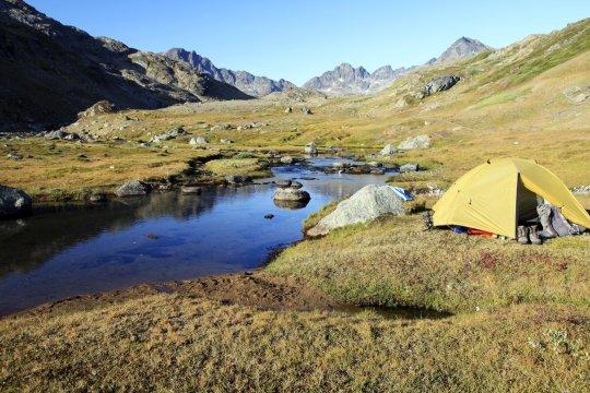 Zeltcamp in der Wildnis