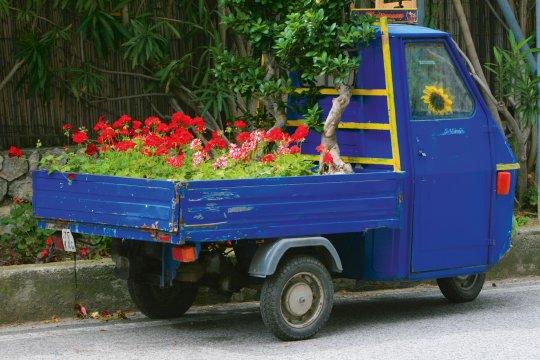 Straßenszene Blumenlieferant