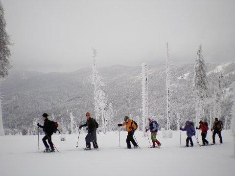 Schneeschuhgehen Bayerischer Wald 4