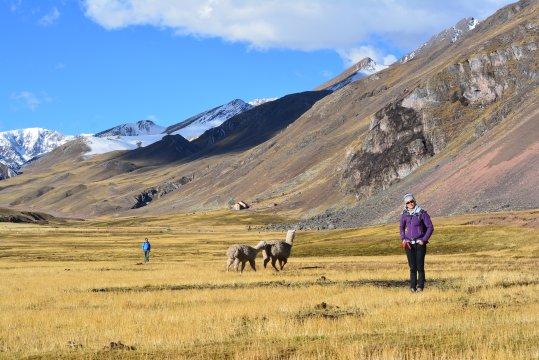 Pampachillca Peru