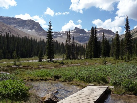 Iceline Trail 2