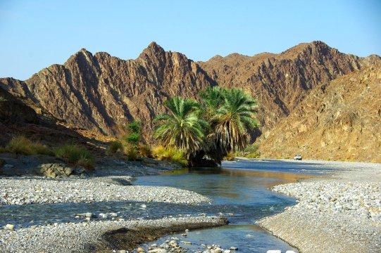 Wadi Abyad_2