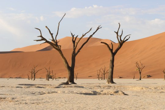 Namibia-Deadvlei-Sonnenaufgang