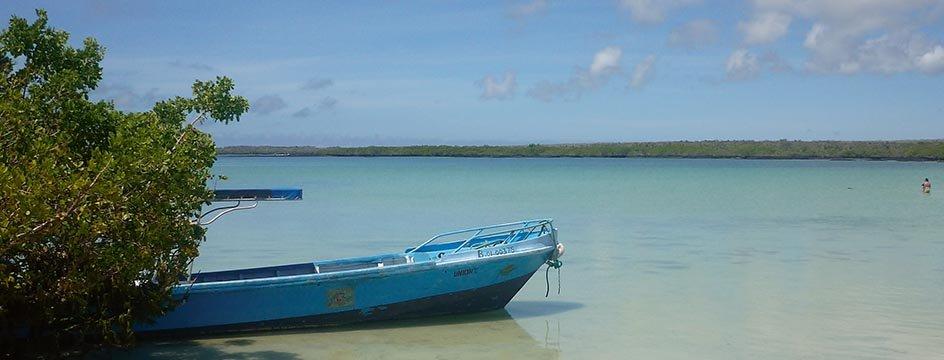 h_AMS_IWI_Galapagos_Tortuga_Bay_Strand