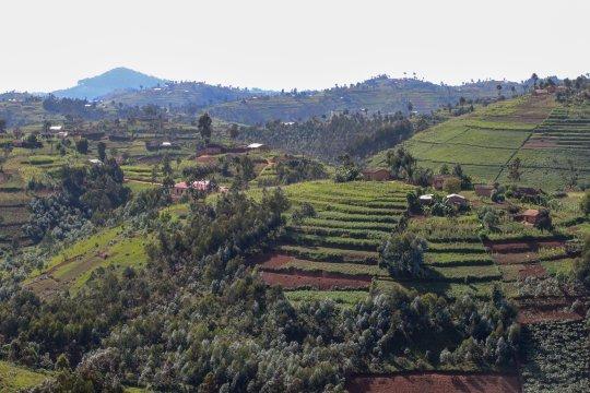 Ruanda-Huegel-im-Sueden