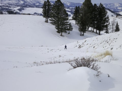 Skiwandern Yellowstone unterwegs