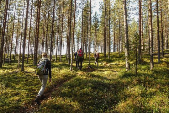 Wanderung beim Basecamp - Johanna Frielingsdorf