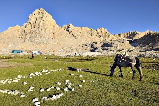 Yedigoeller Maultier hat Feierabend Taurusgebirge