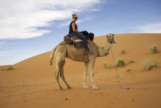 kamelreiten merzouga 2