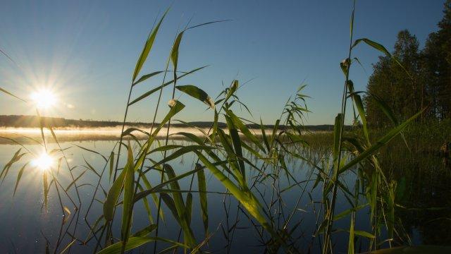 Sonnenaufgang beim MI.EKO BASECAMP©Johanna Frielingsdorf