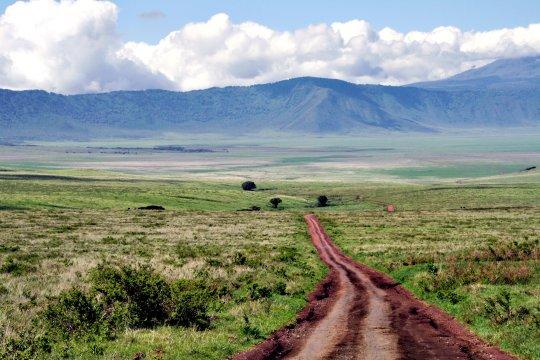 Ngorongroro
