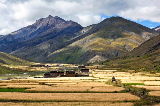 Dorf Dho Tarap im Dolpo