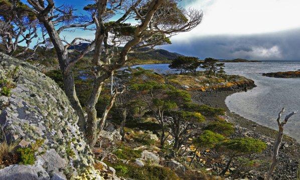 Tierra del Fuego 2