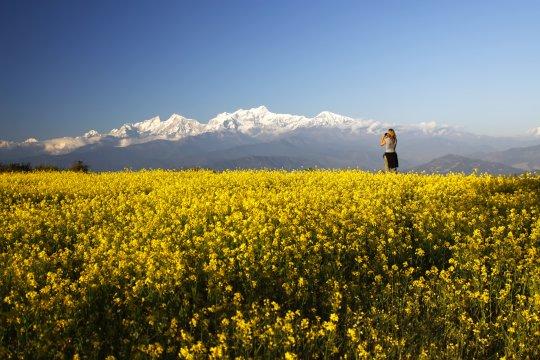 Blick auf das Annapurna-Massiv von Bandipur