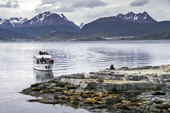 Beagle Channel cruise observing Sea Lion colony Ushuaia Tierra Del Fuego Patagonia Argentina 2
