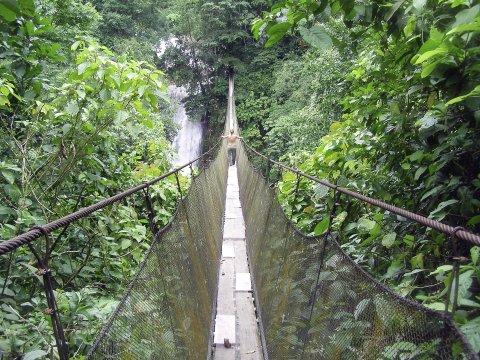 Los Campesinos bridge