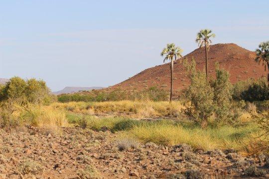 Namibia-Palmwag-Lodge-Natur-Berge-Namibia