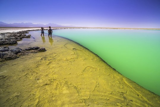 Laguna Cejar aka floating salt lake lagoon Atacama Desert North Chile
