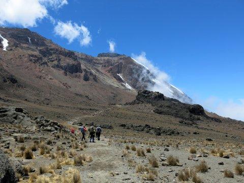 Tansania-Zwischen-Shira-und-Barranco-Camp-(Aufstieg-zum-Lava-Tower-2