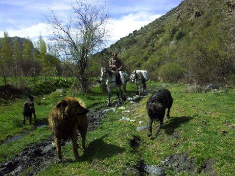 Begegnungen in den Alpujarras
