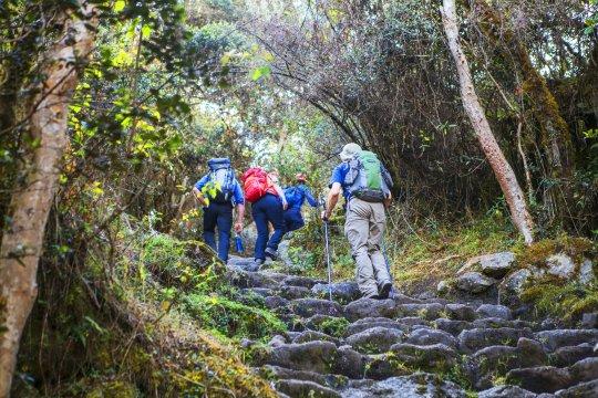 Wandergruppe auf dem Inka Trail_2
