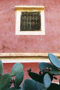 Hausfront mit Kaktus im Antiatlas_2