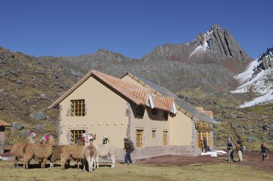 Lodge Huampococha und Alpakas 2