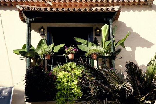 Idyllische Häuschen auf La Palma