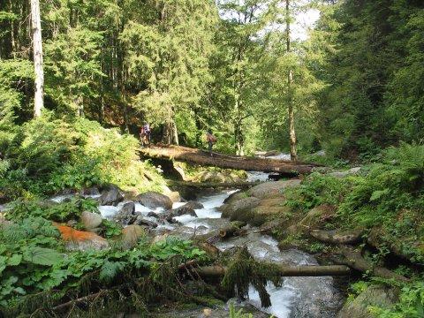 Karpaten Flussquerung