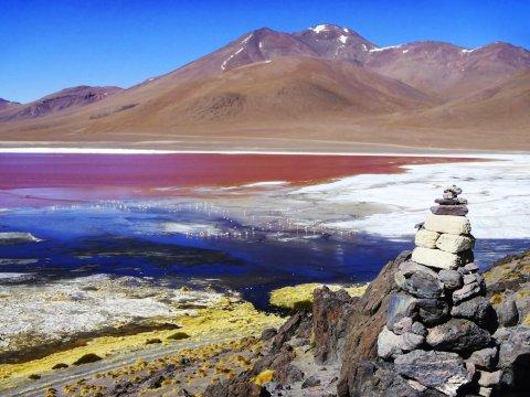 Laguna Colorada im Atliplano