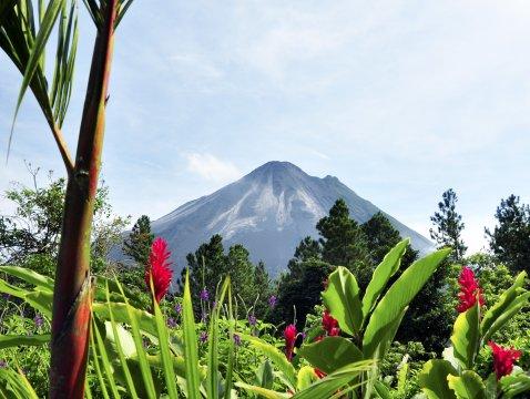 Vulkan Arenal Blume