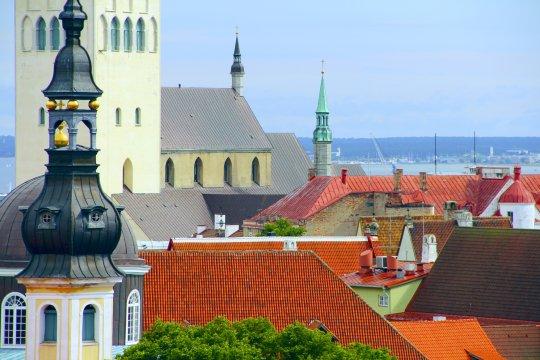 Tallinn über den Dächern