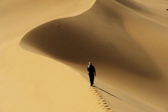 Wanderer Sand 2