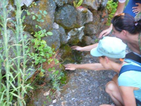 Ischia Mose