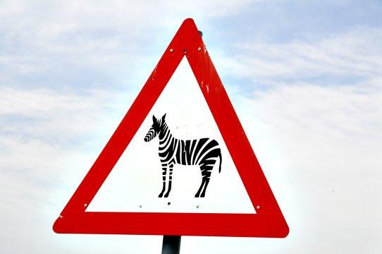 Verkehrsschild mit Zebra_2