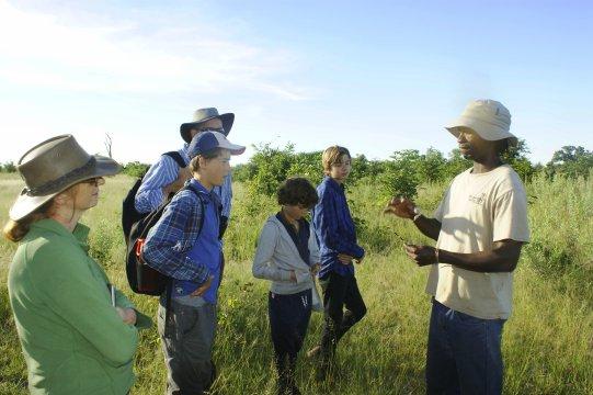 Okavango Delta auf Fusspirsch