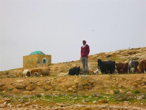 Israel-Wadi-Kelt-Hirte