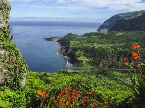 Gruene Kueste Azoren