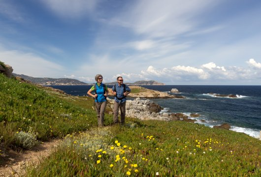 Wanderer Küste Calvi, Korsika
