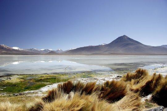 Hochlandlagune Atacamawüste ChileHochland Lagune Atacama Chile 2