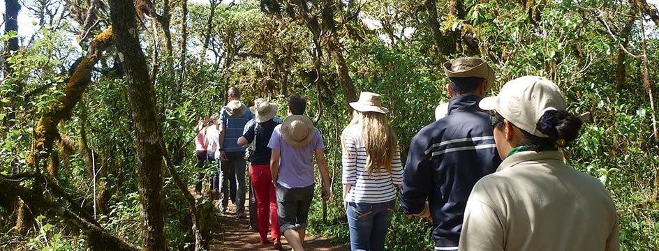 _AMS_IWI_Galapagos_Wanderung_auf_Santa_Cruz