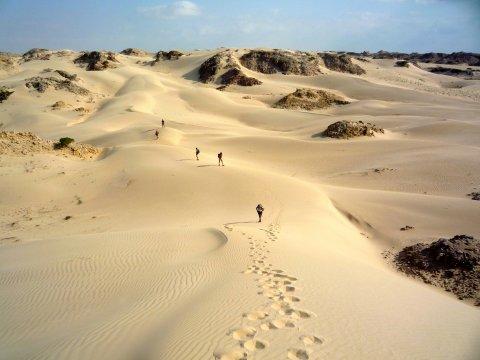 Wandern auf den weißen Dünen_2