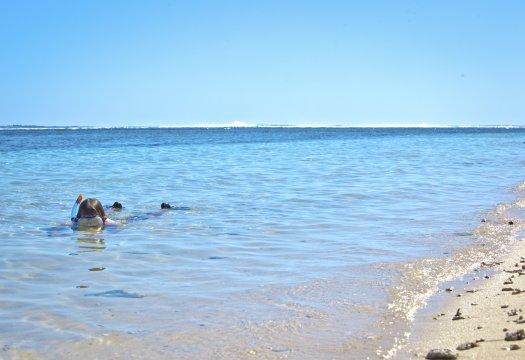 Schnorcheln entlang der Küste auf La Reunion