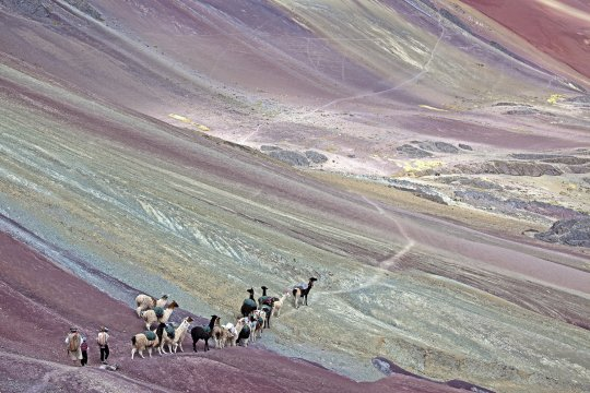 Lodge-Trekking mit Alpakahirten in Vilcanota_2